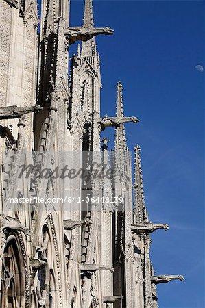 Gargoyles on Notre Dame Cathedral, Paris, France, Europe