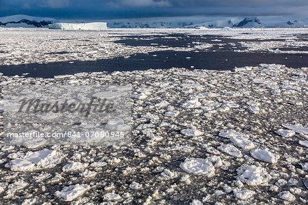 First year sea ice and brash ice near Petermann Island, western side of the Antarctic Peninsula, Southern Ocean, Polar Regions