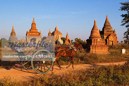 Wooden horse cart taking tourists around Bagan temples, Bagan (Pagan), Central Myanmar, Myanmar (Burma), Asia