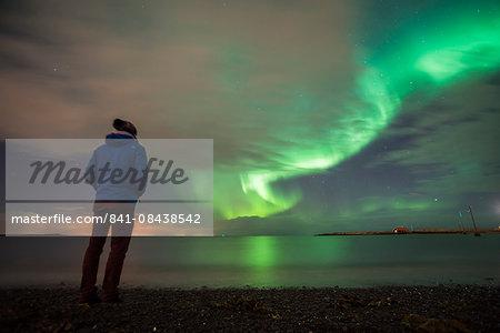 Tourist watching the Northern Lights (Aurora Borealis), Reykjavik, Iceland, Polar Regions