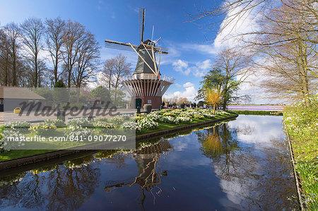 Windmill at Keukenhof Gardens, Lisse, Netherlands, Europe