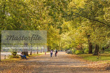 Hyde Park, London, England, United Kingdom, Europe