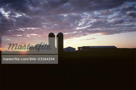 FARM BUILDINGS & SILOS AT SUNSET VAN WERT COUNTY OHIO