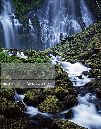 LOWER PROXY FALLS WILLAMETTE NATIONAL FOREST NORTHEAST LANE COUNTY, OREGON