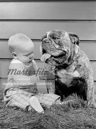 1950s - 1960s BABY SITTING PLAYING WITH BULLDOG STUDIO