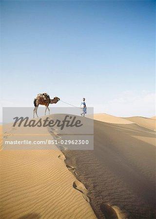 'Blue Man' (tribe of Saharan traders) with camel at dawn in dunes. Tinfou near Zagora,Morocco