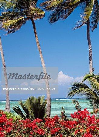 Looking out to sea across Bougainvillea bushes from The Palms Hotel,Paje,Zanzibar,Tanzania.