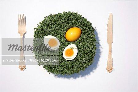 Easter egg and boiled egg on cress