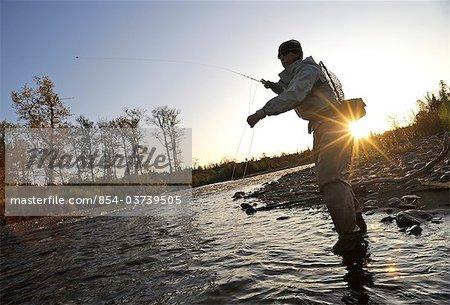 Silhouette of a woman flyfishing and casts for wild steelhead on Deep Creek, Kenai Peninsula, Southcentral Alaska, Autumn