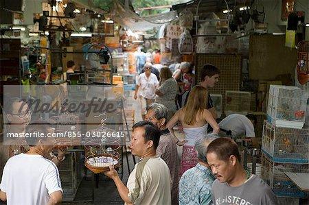 Bird Street,Mongkok,Hong Kong