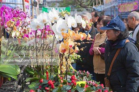 People shopping at the flower market, Tsuen Wan, Hong Kong