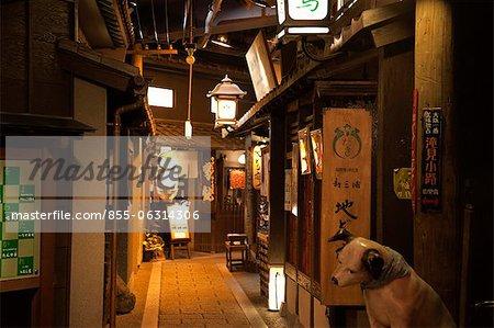 Traditional Japanese food restaurant, Osaka, Japan