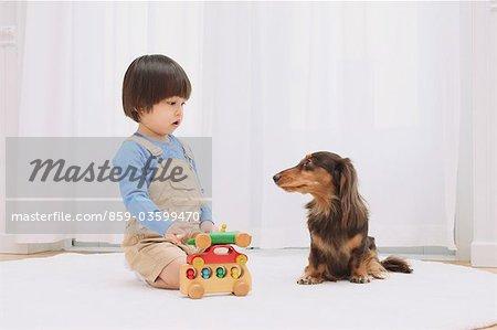 Miniature Dachshund And A Boy
