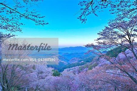 Mt. Yoshino, Nara Prefecture, Japan