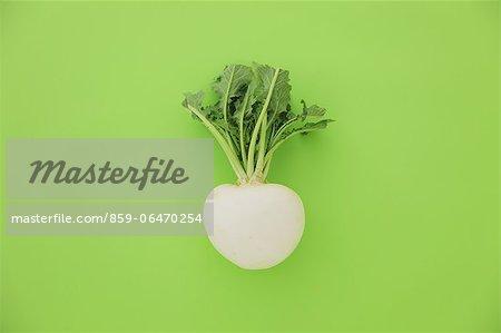 White turnip on green background