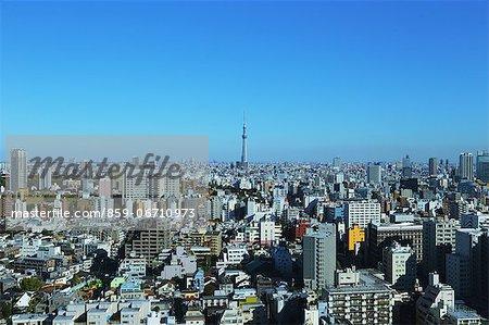 Tokyo Sky Tree and cityscape