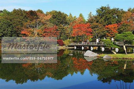 Japanese Garden at Showa Kinen Park, Tokyo