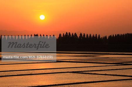 Sunset, Saitama, Japan