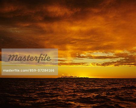 Island Of Palm, Fiji