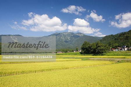Mt. Hakkai, Niigata, Japan