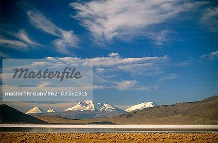 Chile,the salt flats of Salar de Surire. The area is home to migrating Flamingo,Vicuna,Alpaca & Llama.