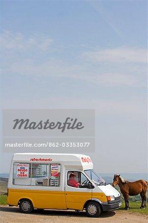 Ice Cream Van and Dartmoor pony