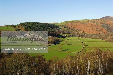 Wales,Denbighshire,Llangollen. Lush lowground pasture beside the River Dee leads back towards Llantysilio Mountain.
