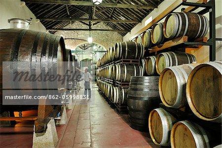 Venancio da Costa Lima wine cellars. Quinta do Anjo, Portugal