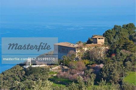 Almond Blossom, Son Marroig, Majorca, Balearics, Spain