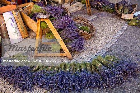 Sault, Vaucluse, Provence, France