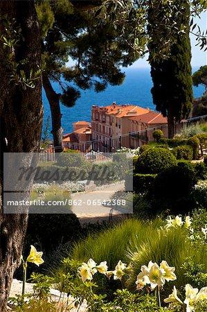 Gardens of New National Museum Villa Paloma, Principality of Monaco, Europe