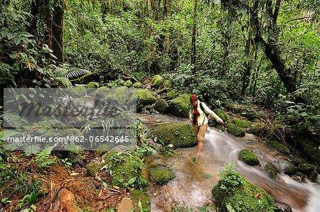 Wading across a creek at Parque Nacional de Amistad near Boquete, Panama, Central America.