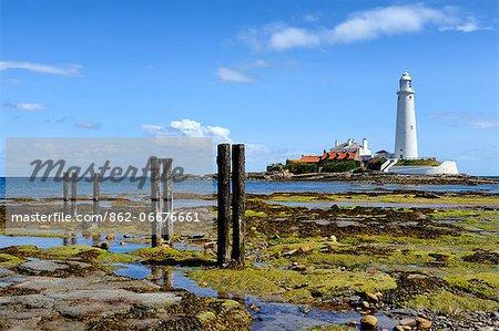 Europe, England, Tyne and Wear, St Marys Lighthouse