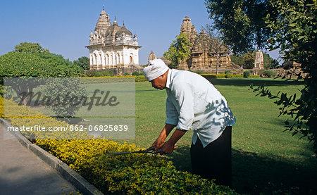 Asia, India, Madhya Pradesh, Khajuraho.  Gardener cutting hedge in early morning light.