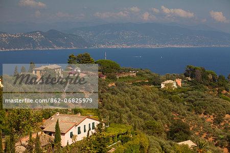 Northern Italy, Italian Riviera, Liguria, Portofino. Luxury villas overlooking the sea in the surroundings of Portofino
