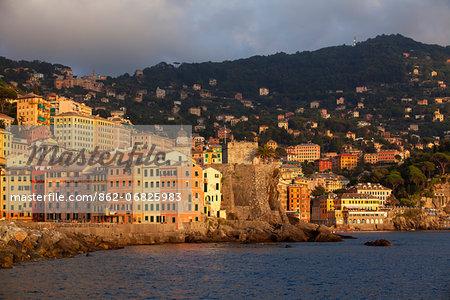 Northern Italy, Italian Riviera, Liguria, Camogli. Surroundings of the village of Camogli