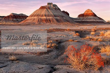 United States of America, Arizona, Petrified Forest National Park