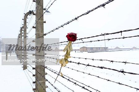 Europe, Eastern Europe, Poland, Auschwitz-Birkenau (German Nazi ...