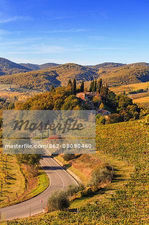 Italy, Italia. Tuscany, Toscana. Firenze district. Chianti. Greve in Chianti