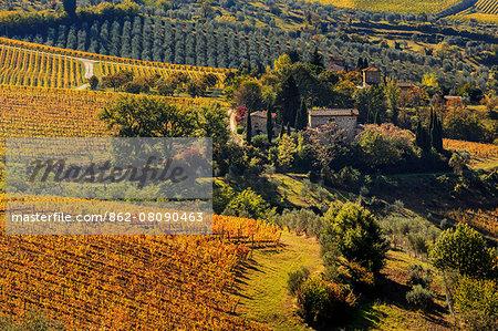 Italy, Italia. Tuscany, Toscana. Firenze district. Chianti.