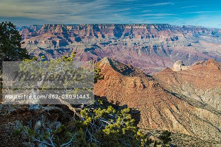 Top view of south rim, Grand Canyon National Park, Arizona, USA
