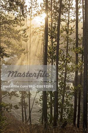 USA, Wyoming, Rockies, Rocky Mountains, Yellowstone, National Park, UNESCO, World Heritage, rising sun along Yellowstone river