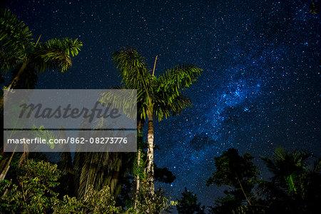 South America, Peru, Amazonia, South Manu National Park , night sky, UNESCO World Heritage