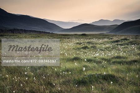 View along countryside fields towards misty Snowdonia mountain range in distance.