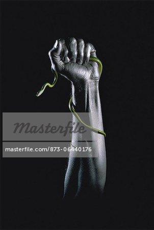 Hand Holding Snake