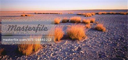Magkadikadi Pan Botswana