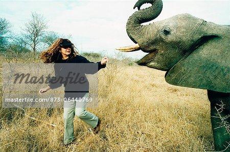 Woman Feeding Elephant, Hoedspruit, Mpumalanga, South Africa