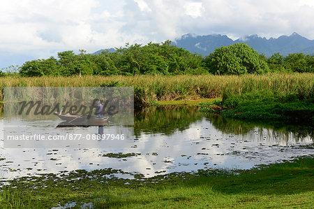 South-East Asia, Malaysia, Langkawi archipelago, bark along a river