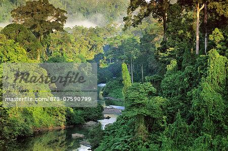 River in lowland rainforest, Danum Valley, Sabah, Borneo