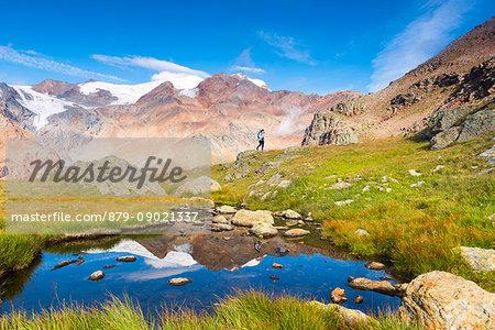 Alpine lake from National park Stelvio with walker Europe, Italy, Trentino region, Venezia valley, Sun valley, Pejo, National park Stelvio